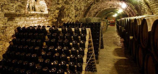 grower-champagne-underground-1